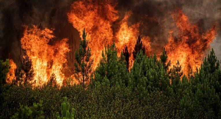 Incêndios em Cabeceiras de Basto