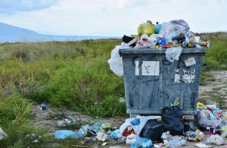 Câmara de Cabeceiras de Basto recolhe 22 toneladas de lixo em lixeiras clandestinas