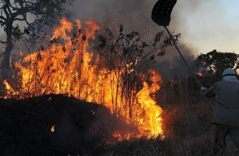 GNR identificou 7 suspeitos de atearem fogos em Cabeceiras, Celorico e Fafe